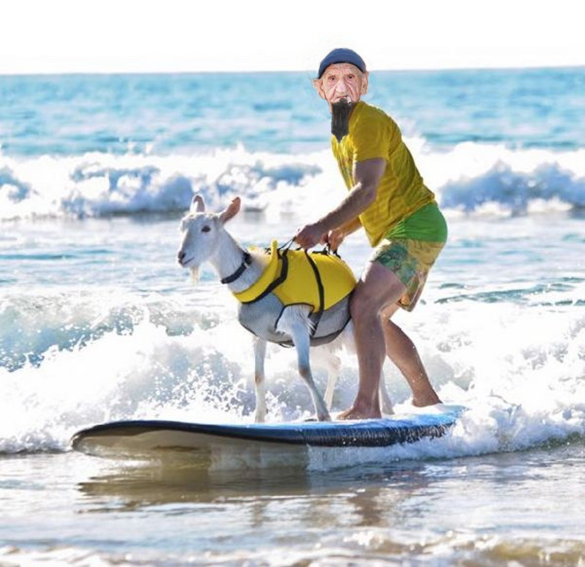 Name:  barney surfing goat 2.jpg Views: 807 Size:  155.2 KB